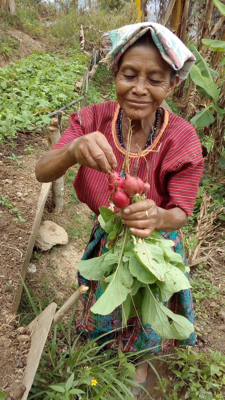 INPN e.V. Besuche der Projekte in Latein-Amerika